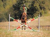 Equitazione in campagna