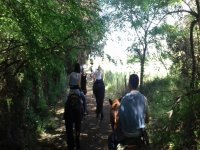 Passeggiata in campagna