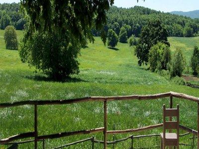 Parco Avventura Falcare MTB