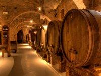 The Apulian cellars