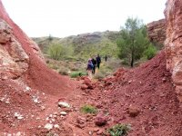 Excursion to the bauxite quarries