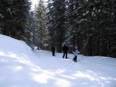 Guide Alpine San Martino di Castrozza