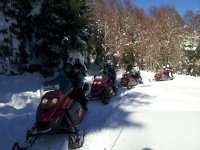 SnowCross Motoslitte