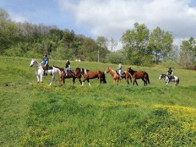 Arbaspàa Passeggiate a Cavallo