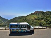 Bus Hop-in Hop-off