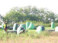 Un campo immerso nel verde