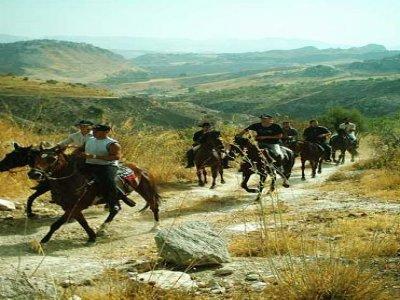 Borgo Montaperto Passeggiate a Cavallo