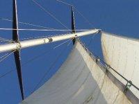 Albero della barca
