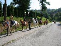 Passeggiate a cavallo per bambini allievi