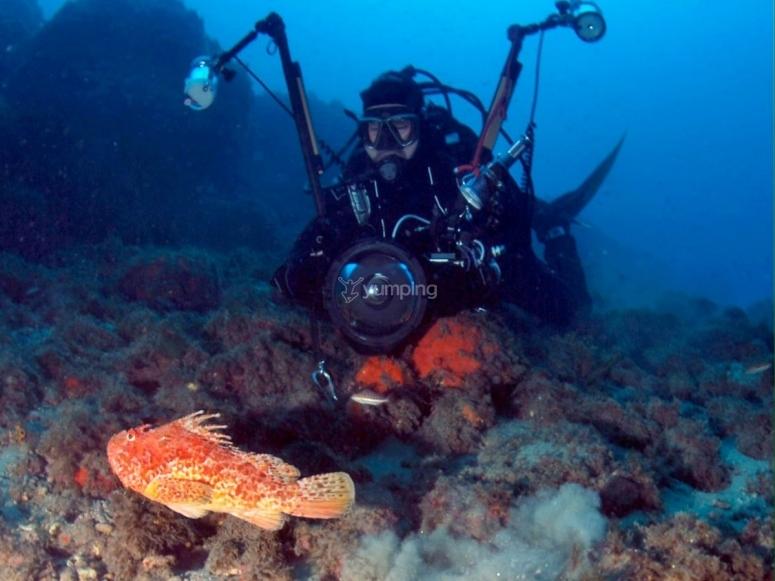Corsi di Fotografia subacquea