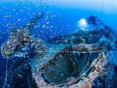Corso sub di biologia marina Gioiosa Ionica