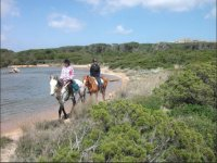 Passeggiate equestri Sardegna