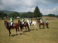 Preparazione gare a cavallo