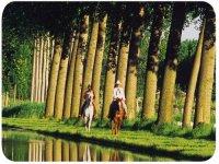 Trekking e passeggiate a cavallo per gli ospiti