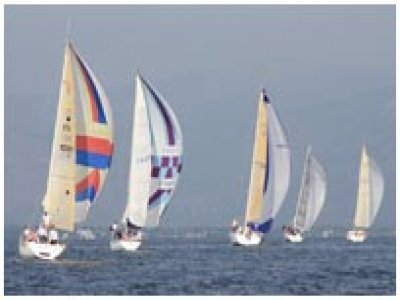 Sail 2 Sail Vela