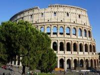 Vista sul Colosseo e sui pini di Roma