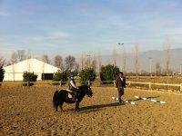 lezione pony