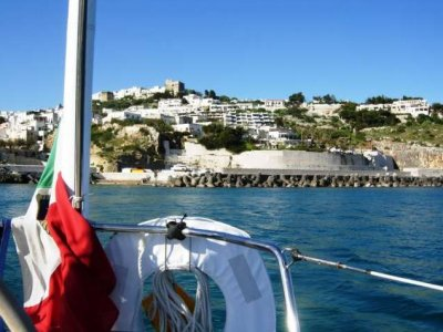 Marelti Escursione in Barca