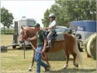 Lezioni di equitazione in maneggio