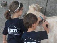 Proposte equestri per bambini
