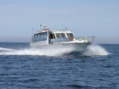 Navigation certification to Capoliveri