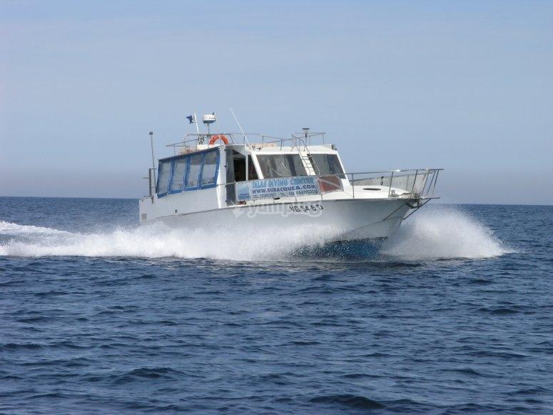 Boat May-be