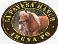 La Pavesa Ranch Enoturismo
