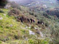 Trekking in Ciociaria