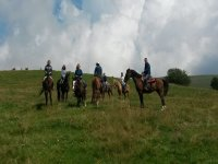 Tutti insieme a cavallo