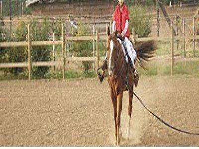 Parco delle Chiese Passeggiate a Cavallo