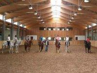 Corsi di equitazione e attacchi