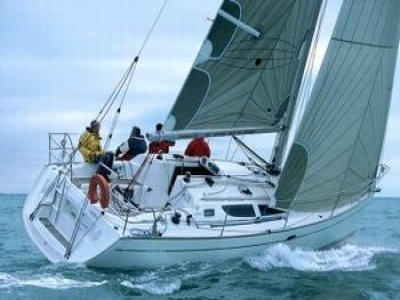 Antibavela Noleggio Barche