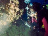 Diving in Crotone