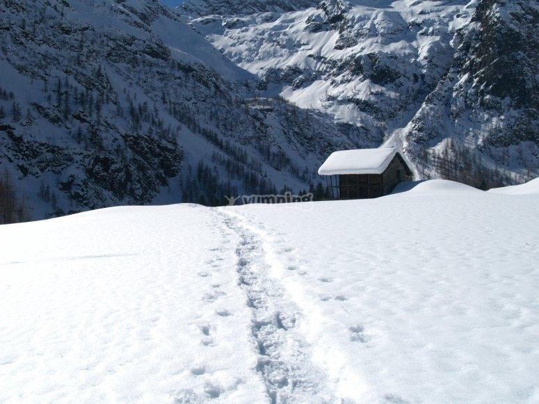sentiero nell'inanto della neve in val d'otro