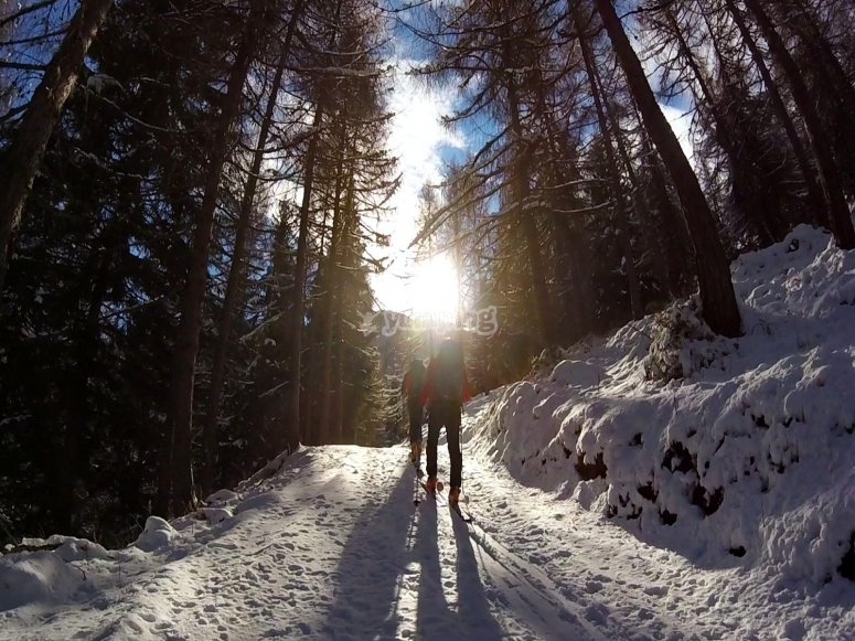 Snowshoeing towards the sun