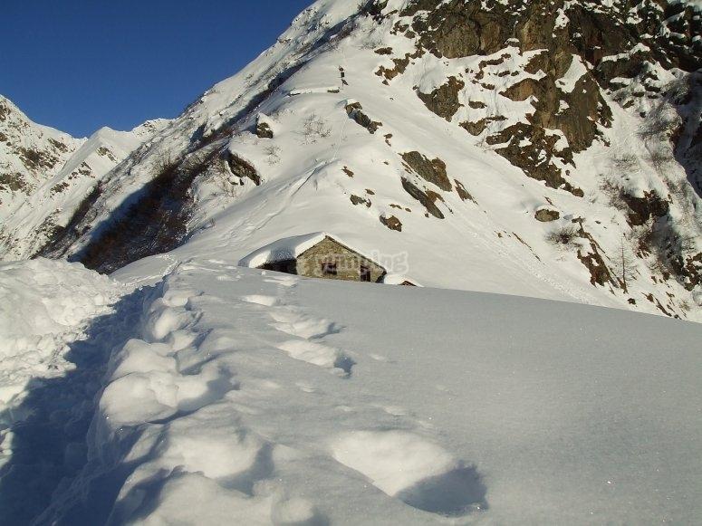 sentiero verso l'Alpe Sattal