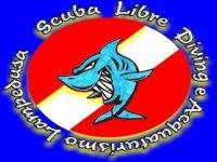 Scuba Libre Diving & Acquaturismo Lampedusa Whale Watching