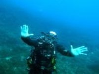 Various diving courses