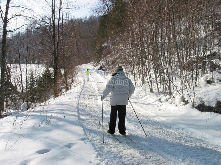Sul sentiero in sci