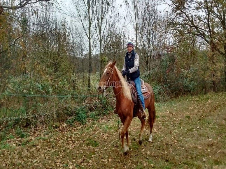 A cavallo nel verde per una passeggiata