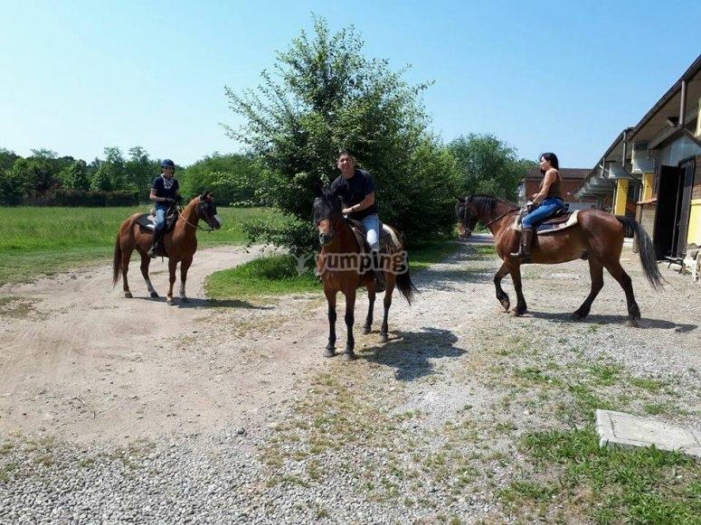 A cavallo in compagnia