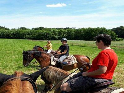 Passeggiata a cavallo e pranzo nel Ticino