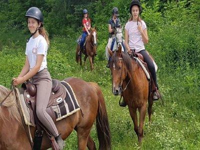 Passeggiata a cavallo a Campo dei Fiori 1giornata
