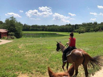 Passeggiata a cavallo nel Parco del Ticino 3 ore