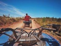 Dirt path in quad
