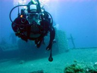 Diving with the experts