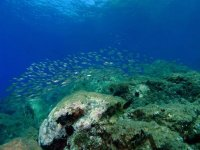 Excursions in the seabed