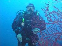 Submarine excursions