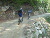 Mountain bike sul sentiero