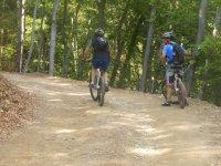 Sulle mountain bike nel bosco